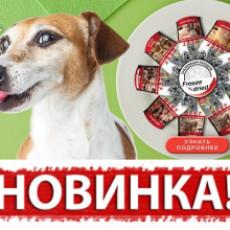 Новинка - лакомства для собак Blitz!