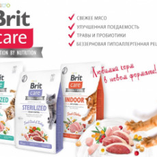 Обновление Brit Care!