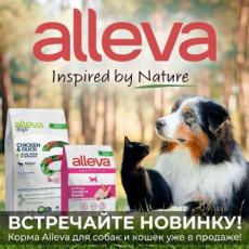 Новинка - сухие корма Alleva!