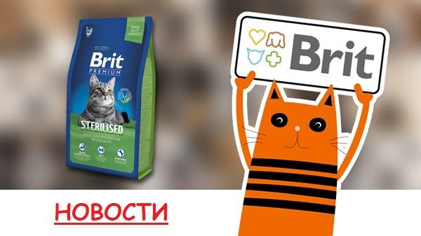 Новые гранулы Brit Premium Cat!