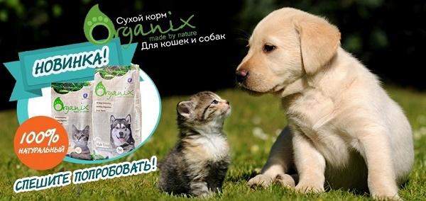 Новинка - корма Organix!