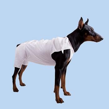 OSSO послеоперационная попона для собак р.