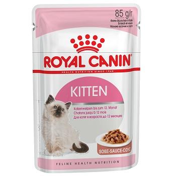 Royal Canin Kitten влажный корм для котят в соусе (12 шт.)