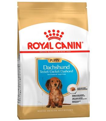 Royal Canin Dachshund Puppy сухой корм для щенков породы такса