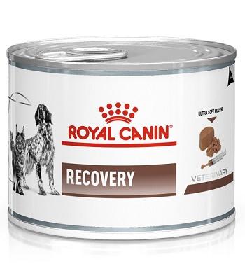 Royal Canin Recovery диета для собак и кошек в период выздоровления