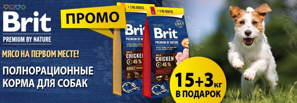 Промо-упаковка Brit для собак!