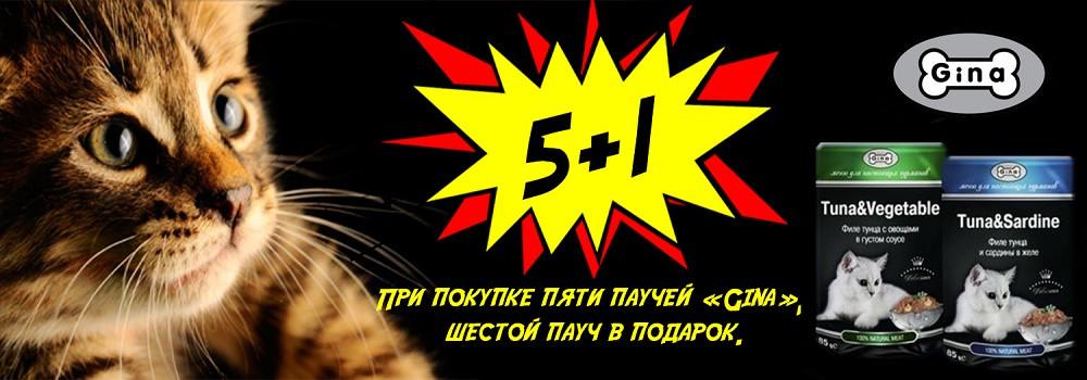 Паучи Gina для кошек 5+1!